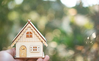 Expert Insights on the 2020 Housing Market